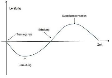 Kurve/Diagramm